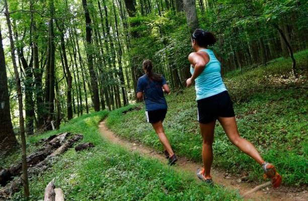 EX2 Adventure #2: Summer Racing on Schaeffer Trails