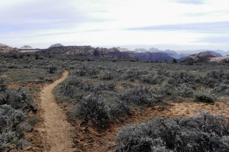 Connector Trail_Zion_DOTR