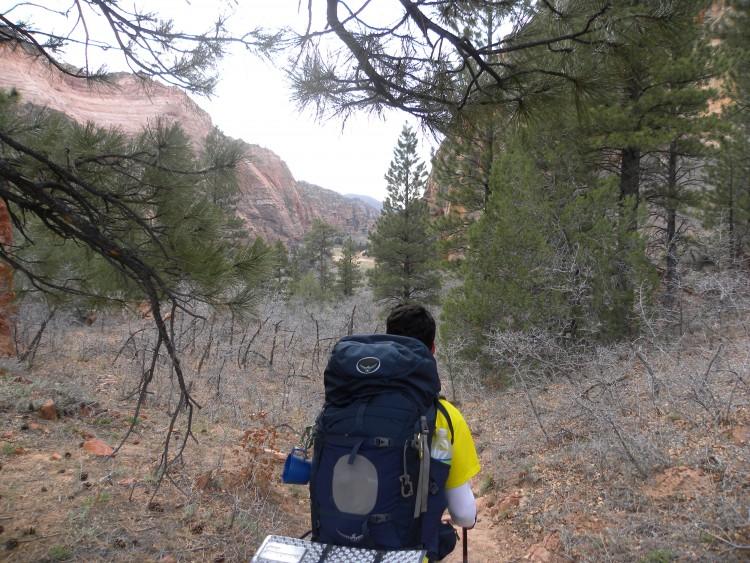 Willis Creek Trail_zion day2