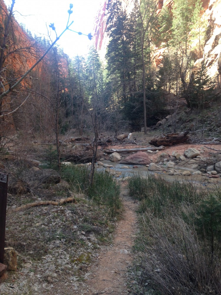 Willis Creek hopping_Zion_DOTR