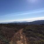 Coastal Zoom 5 mile mark | 50k race report