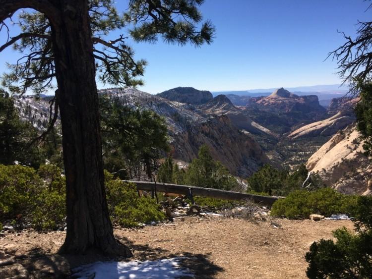 Canyon Rim Trail Views Zion National Park