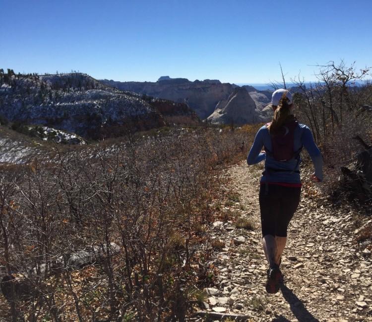 West Rim Trail Running Zion National Park