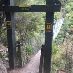 Abel Tasman park bridge