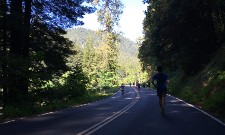 Avenue of the Giants Run second half