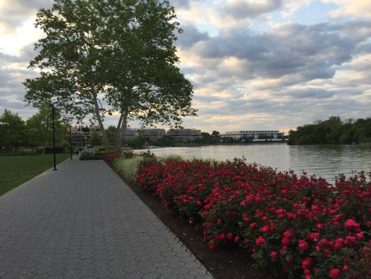 Georgetown waterfront spring
