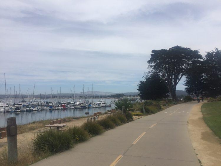 Monterey running trail