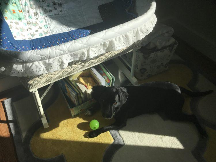 Nursery at 38 weeks